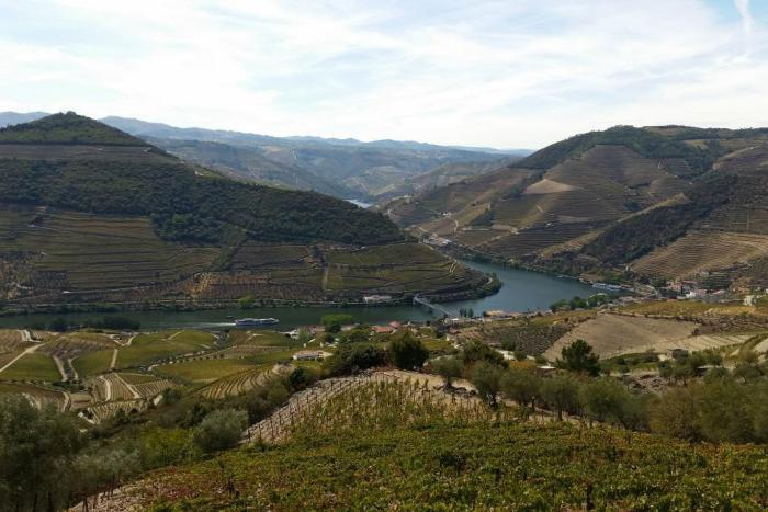 Visiting the Douro Valley? What you need to know...