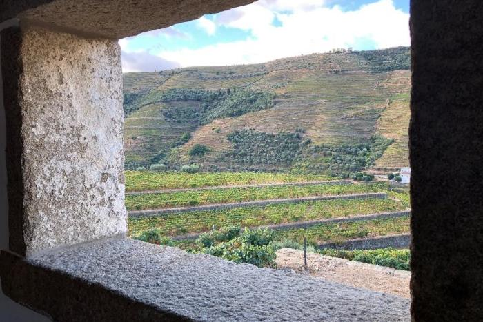 The 3 best wineries in Douro Valley