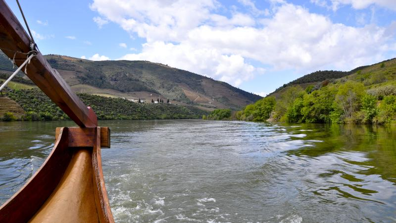Boat Ride (Douro River)